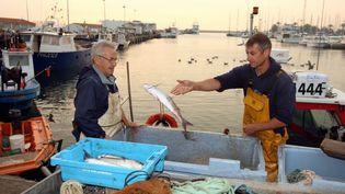 Des pêcheurs à Port-Vendres(Pyrenées Orientales), en 2011. (MAXPPP)