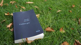 "3L'enfant grec"", 14e roman de Vassilis Alexakis / Stock  (Laurence Houot / Culturebox)"