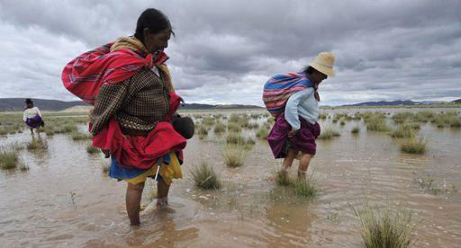 Paysannes marchant dans un champ d'orge inondé par des crues à Masaya (60 km à l'ouest de la Paz) le 9 mars 2012 (AFP - Aizar Raldes)