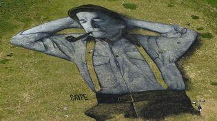 Une fresque de 10.000m², réalisée à la peinture bio par Saype, en Suisse  (Alain Grosclaude / AFP)