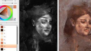 """Cette jeune femme apparait sous une peinture de Degas,"""" Portrait de femme"""" (18876-1880) quand on la passe aux rayons du synchrotron  (David Thurrowgood / Nature Publishing Group / AFP)"""