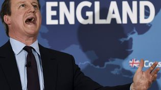 David Cameron, lors d'un meeting à Frinton (Angleterre), le 24 avril 2015. (TOBY MELVILLE / REUTERS)