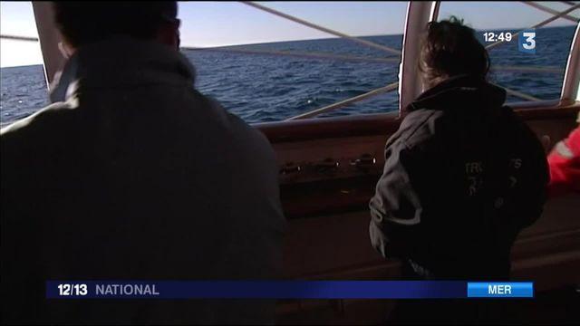 Le Belem : apprendre la navigation à l'ancienne sur le célèbre trois-mats