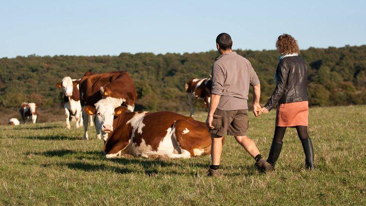 Rodolphe et Sandrine Meunier au milieu de leurs vachesà Ozenay, en Saône-et-Loire. (FACEBOOK / RADIO FRANCE)