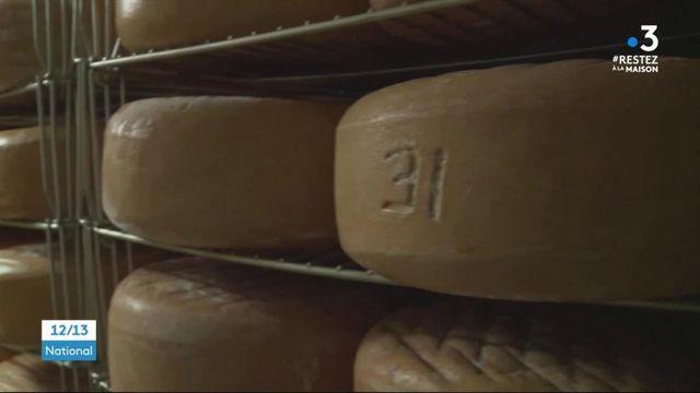 Pyrénées-Atlantiques : les fromagers béarnais ont trop de stock