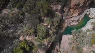 À Oman, les oasis sont nichés dans un cadre tout simplement incroyable. (FRANCE 2)