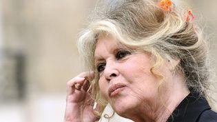 Brigitte Bardot (2007)  (ERIC FEFERBERG / AFP)