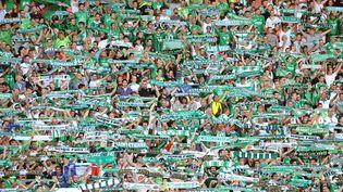 Les supporters des Verts au stade Geoffroy-Guichard lors du match opposant Saint-Etienne à Guingamp,le 18 août 2013. (  MAXPPP)