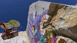 LeFestival Street art on The Roc habille une carrière bourguignone  (PHILIPPE DESMAZES / AFP)