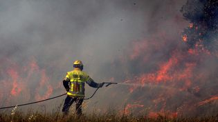 Un pompier intervient lors d'un incendie près de Perpignan (Pyrénées-Orientales), le 25 juin 2012. (PHILIPPE ROUAH / MAXPPP)