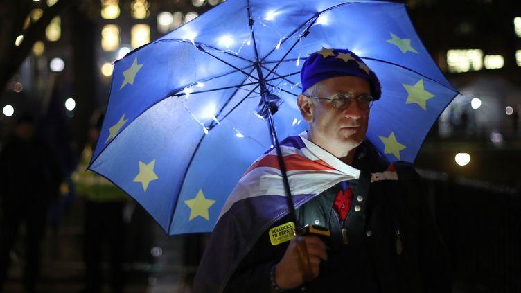 Un partisan du maintien du Royaume-Uni dans l'Union européenne, à Londres, le 14 janvier 2019. (DANIEL LEAL-OLIVAS / AFP)