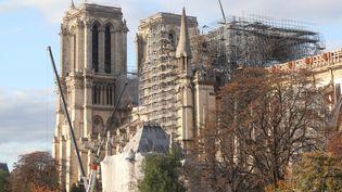 Le chantier de Notre-Dame de Paris, photographié le 5 novembre 2019, plus de six mois après l'incendie qui a ravagé la cathédrale. (MAXPPP)