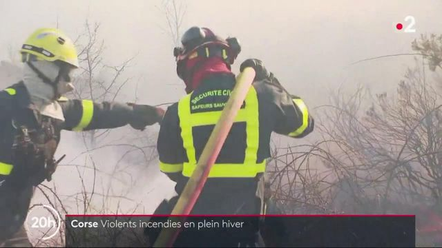 Corse : de violents incendies en plein hiver