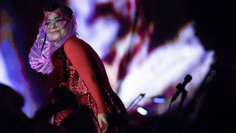 Björk à Berlin début août 2015  (BRITTA PEDERSEN / ZB / Picture-Alliance/AFP)