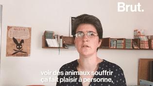 L214 : l'association qui dénonce la maltraitance animale à coup de vidéos chocs. (Brut)