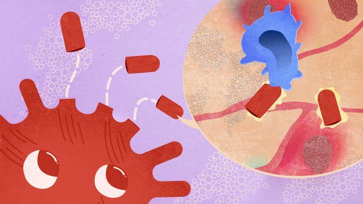 """Les vaccins """"sous-unitaires""""(ou à protéine recombinante),isolent les protéines S du Sars-CoV-2, qui sont ensuite administrées pour déclencher la réponse immunitaire. (PIERRE-ALBERT JOSSERAND / FRANCEINFO)"""