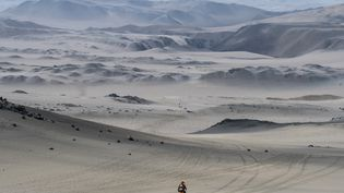 NOVEMBRE. Des coureurs du marathon des Sables, une course de 250 km, le 29 novembre 2017 au Peru, entre Coyungo et Samaca. (JEAN-PHILIPPE KSIAZEK / AFP)