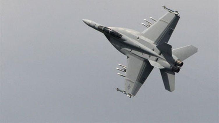 Un avion F-18 de Boeing (AFP - Pierre Verdy)