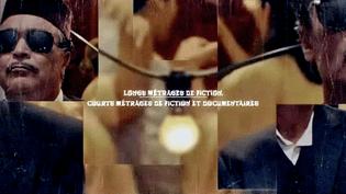 """Le festival """"Lumières d'Afrique"""" de Besançon offre une programmation éclectique de films, concerts, conférences et expositions autour du continent africain  (France 3 / Culturebox / capture d'écran)"""
