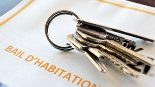 """La Fédération nationale de l'immobilier (Fnaim) a brocardé, vendredi 25 octobre, les """"élucubrations"""" du Conseil d'analyse économique qui, après avoir prôné un alourdissement de la fiscalité foncière, propose des mesures coûteuses pour améliorer la politique du logement. (PHILIPPE HUGUEN / AFP)"""