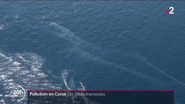 Corse : les côtes menacées par une pollution aux hydrocarbures