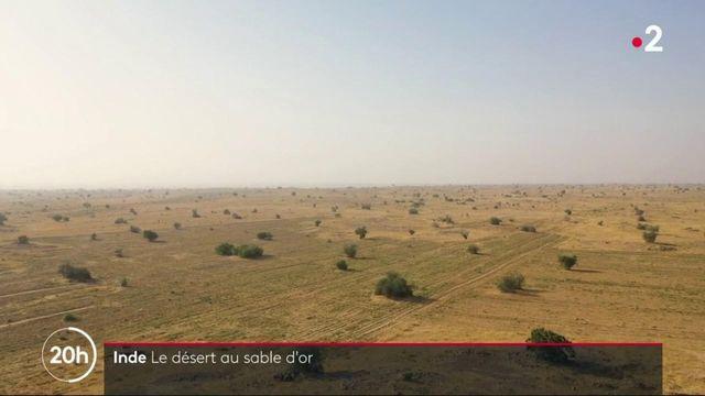 Inde : dans le désert du Thar, l'eau vaut de l'or