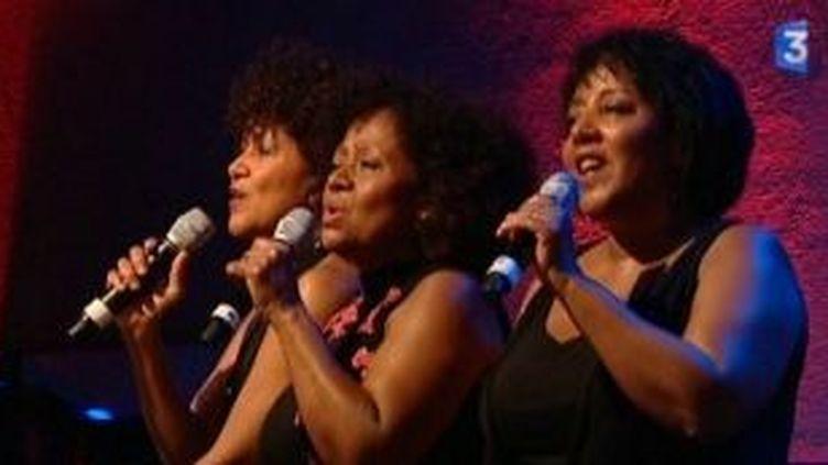 Les Brésiliennes du trio Esperança à Jazz in Ajaccio  (Culturebox)