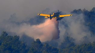 Un canadair intervient non loin de La Jonquère, dans le nord-est de l'Espagne, afin de stopper la progression d'un incendie qui ravage la région, lundi 23 juillet. (LLUIS GENE / AFP)