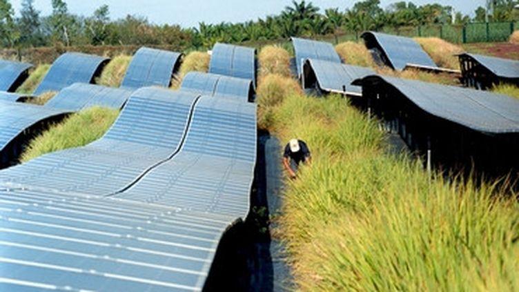 Agriénergie et production d'énergie verte. (AKUO)
