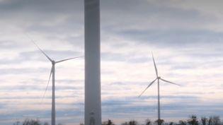 éoliennes (FRANCEINFO)