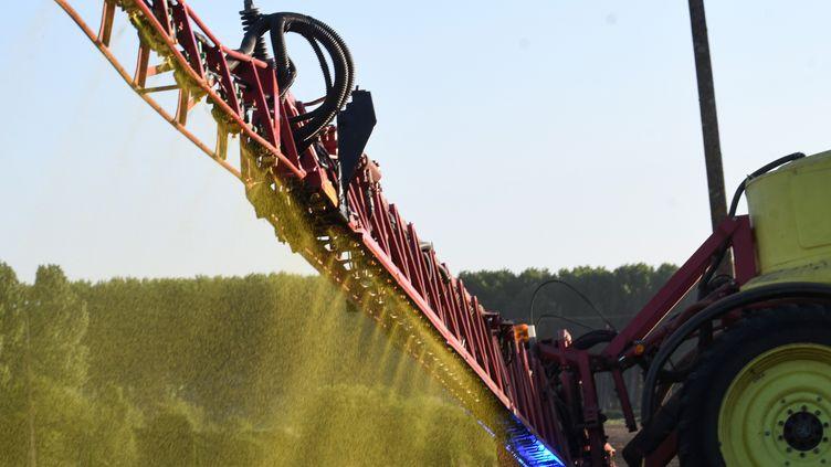 Du pesticide répandu par pulvérisation. Photo d'illustration. (JEAN-FRANCOIS MONIER / AFP)
