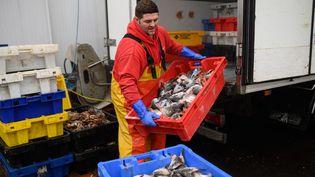 Un pêcheur auport de Bridlington à Bridlington, dans le nord-est de l'Angleterre, le 11 décembre 2020. (OLI SCARFF / AFP)