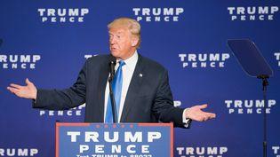Le candidat républicain Donald Trump lors d'un meeting, le 17 octobre 2016, à Green Bay, dans le Wisconsin. (TASOS KATOPODIS / AFP)