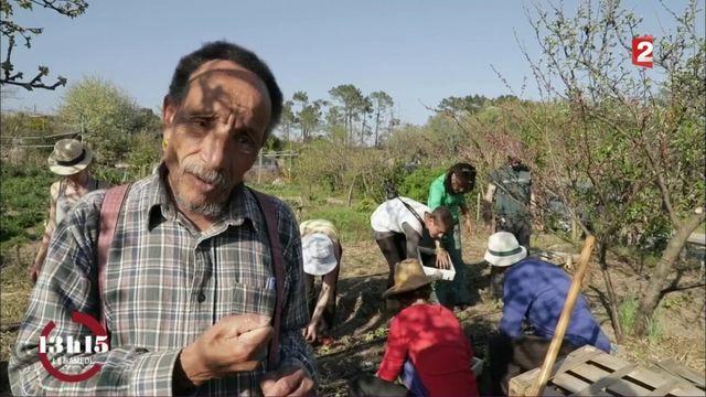 """VIDEO. """"13h15"""". Pierre Rabhi : """"Cultiver son jardin est un acte de légitime résistance"""""""
