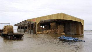 Ferme inondée à L'Aiguillon-sur-Mer (Vendée) (AFP - Bertrand GUAY)