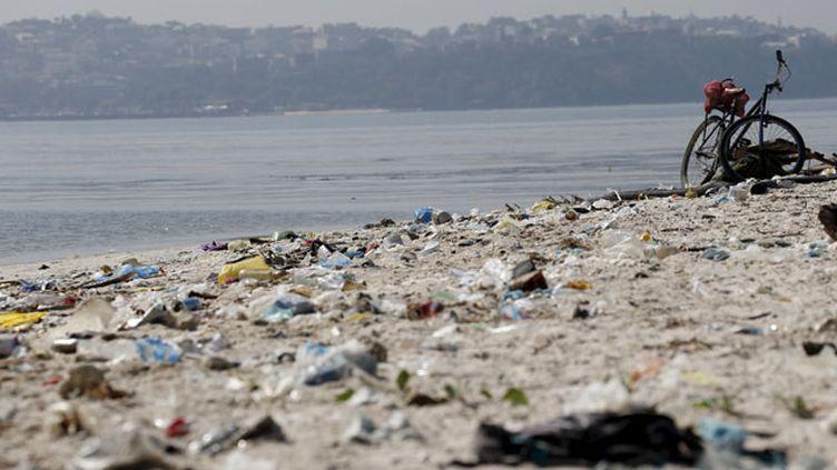(La plage Fundao, sur les rives de la baie de Guanabara, à Rio de Janeiro, le 30 juillet 2015 © REUTERS/Sergio Moraes)