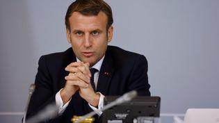 Le président Emmanuel Macron s'exprime lors d'une visioconférence avec des représentants du monde du sport à l'Elysée, à Paris, le 17 novembre 2020. (LUDOVIC MARIN / AFP)
