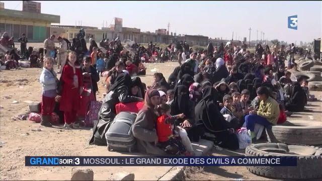 Irak : les civils commencent à s'enfuir de Mossoul
