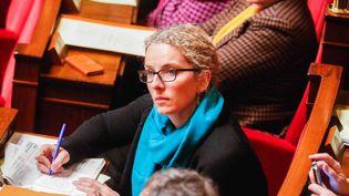 La députée de la deuxième circonscription des Deux-Sèvres Delphine Batho, le 3 février 2015 à l'Assemblée nationale, à Paris. (CITIZENSIDE/JALLAL SEDDIKI / CITIZENSIDE)