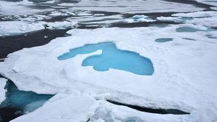 Dans l'océan Arctique, près du pôle Nord, le 14 août 2015. (ULF MAUDER / DPA / AFP)