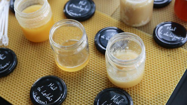 Du glyphosate avait été découvert dans plusieurs fûts de miel (CHRISTOPHE MORIN  / MAXPPP)