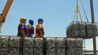 Des huitres vont être jetées dans la baie de New York. (FRANCE 2)