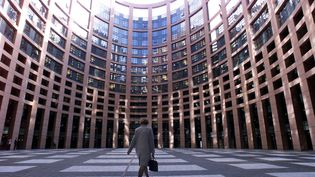 Le Parlement européen à Strasbourg (Bas-Rhin). (GERARD CERLES / AFP)