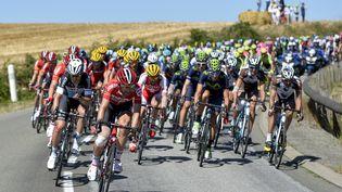 Le peloton lors de la 7e étape du Tour de France, le 10 juillet 2015. (DIRK WAEM / BELGA MAG)