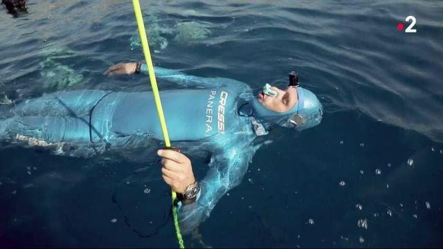 Apnée : en immersion avec le champion du monde Guillaume Néry