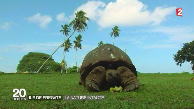 Environnement : quand hôtellerie de luxe et protection de la nature font bon ménage
