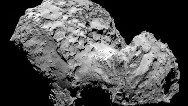 La comète Tchouri vue depuis la sonde Rosetta, à 285 km de distance, le 3 août 2014. (ESA / ROSETTA / MPS FOR OSIRIS TEAM / AFP)