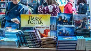 Harry Potter incontournable au Salon du Livre et de la Presse Jeunesse de Montreuil, le 28 novembre 2018 (BRUNO LEVESQUE / MAXPPP)