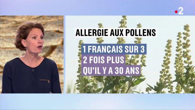 Climat : en France, les conséquences du réchauffement se voient déjà