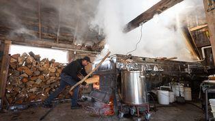 Un producteur de sirop d'érable dans sa cabane à sucre à Saint-Esprit au Québec, le 31 mars 2020 (BENEDICTE BROCARD / AFP)